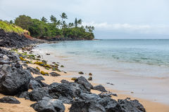 Maui Shoreline Stock Photos