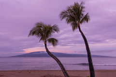 Maui Sunrise Royalty Free Stock Photo