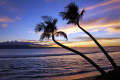 Maui Sunset Stock Images