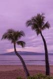 Maui Tropical Sunrise Royalty Free Stock Photo