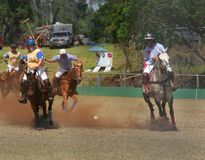 Maui vs. North Oahu polo Stock Photography