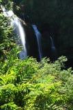 Maui-Wasserfall Stockfoto