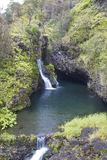 Maui Waterfall Royalty Free Stock Photography