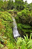 Maui Waterfall and Bridge Stock Images