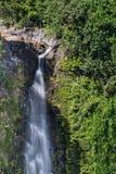 Maui Waterfall Royalty Free Stock Photos