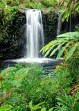 Maui waterfalls. Beautiful day to Maui, road to han, Hawaii Stock Image