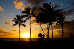 Maui zmierzch Obraz Royalty Free