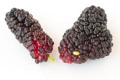 Maulbeere mit zwei Beeren mit einem Endstück auf weißem Hintergrund Lizenzfreie Stockfotografie