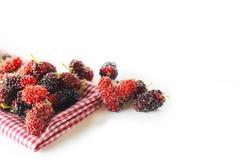 Maulbeerfrucht Stockbilder