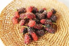 Maulbeerfrucht Lizenzfreies Stockbild