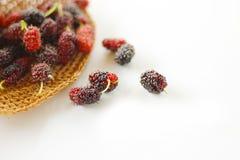Maulbeerfrucht Stockfoto