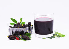 Maulbeerfruchtantioxydant Lizenzfreies Stockbild