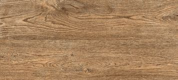 Macro brown wood texture background royalty free stock photography