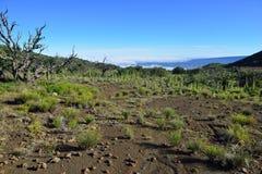 Mauna Kea en la isla grande de Hawaii Fotos de archivo
