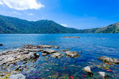 Mauntain Lake in Komodo Island Stock Photography