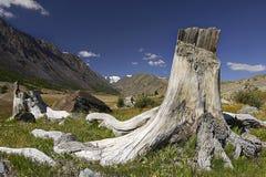 Mauntain Landschaft Lizenzfreie Stockbilder