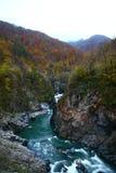 Mauntain och flod, skog Royaltyfria Bilder