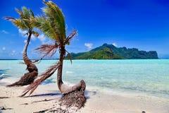 Maupiti和博拉博拉岛,法属波利尼西亚 图库摄影
