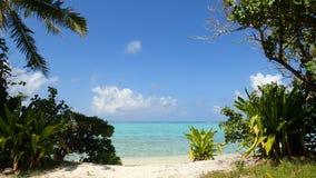 Maupiti ö, blå lagun, vulkanisk ö, grön vegetation på stranden av boraen franska Polynesien arkivbilder