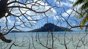 Maupiti island , volcanic island through branches, green vegetation on the beach of bora French Polynesia royalty free stock photos