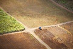 Maurícias Imagem de Stock