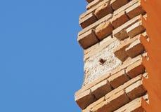 Maurer, der Ziegelsteine auf Baustelle installiert Stockfotos