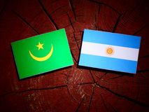 Mauritania flag with Argentinian flag on a tree stump isolated Stock Images