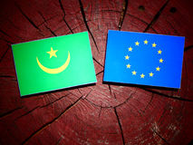 Mauritania flag with EU flag on a tree stump isolated. Mauritania flag with EU flag on a tree stump Stock Photos