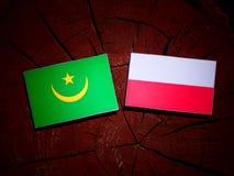 Mauritania flag with Polish flag on a tree stump isolated. Mauritania flag with Polish flag on a tree stump stock illustration