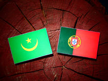Mauritania flag with Portuguese flag on a tree stump isolated. Mauritania flag with Portuguese flag on a tree stump royalty free illustration