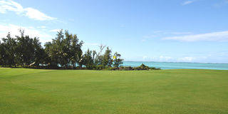 Mauritian golf on island cerf Royalty Free Stock Photography