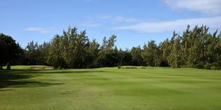 Mauritian golf on island cerf Stock Photos