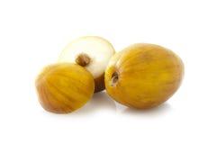 Mauritiana Ziziphus (Chinee Apple) Στοκ Εικόνες