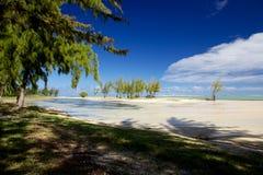 Mauritisk strand Arkivbild