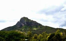 mauritius Fotografia de Stock Royalty Free