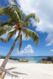 mauritius Fotografia Stock