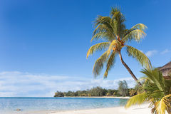 Mauritius Royalty Free Stock Photo