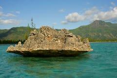 Mauritius obraz royalty free
