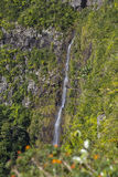mauritius Imagem de Stock