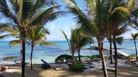 Mauritius Beach Arkivbilder