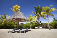 Mauritius beach. Lounge Chair on the sand of the island of Mauritius among the palm trees stock photos