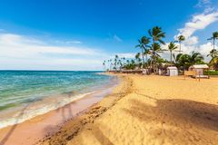 Mauritius. Beach sand palm shore bed tree Stock Photography