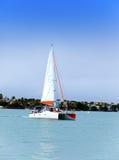 Mauritius. Catamaran in sea Royalty Free Stock Photography
