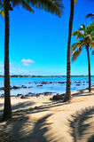 Mauritius Escapade. Nice serene view of mauritius shoreline Royalty Free Stock Photography