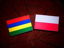 Mauritius flag with Polish flag on a tree stump isolated. Mauritius flag with Polish flag on a tree stump royalty free illustration