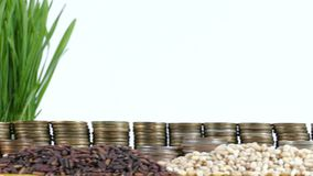 Mauritius flag waving with stack of money coins and piles of wheat. And rice seeds stock video
