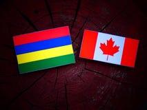 Mauritius flaga z kanadyjczyk flaga na drzewnym fiszorku odizolowywającym obrazy stock