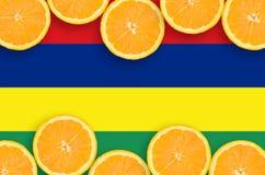 Mauritius flagga i citrusfruktskivahorisontalram arkivbilder
