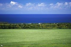 Mauritius Flic-en-Flac kust Arkivfoton