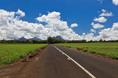 Mauritius road and landscape Royalty Free Stock Images